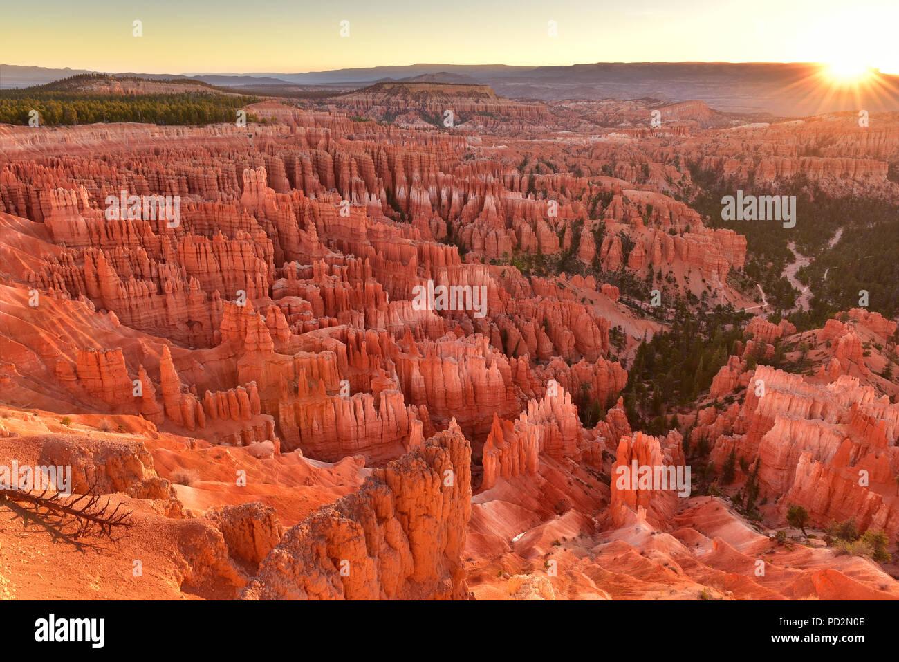 Sunrise Point dans le Parc National de Bryce Canyon dans l'Utah USA pendant le lever du soleil. Photo Stock