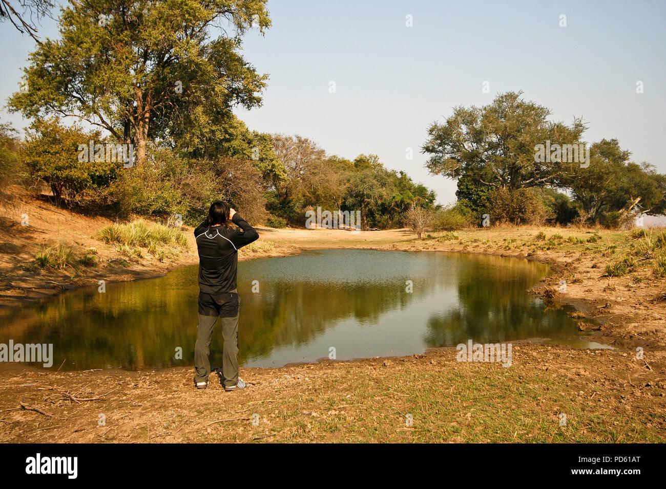 Mana Pools National Park, Zimbabwe Photo Stock