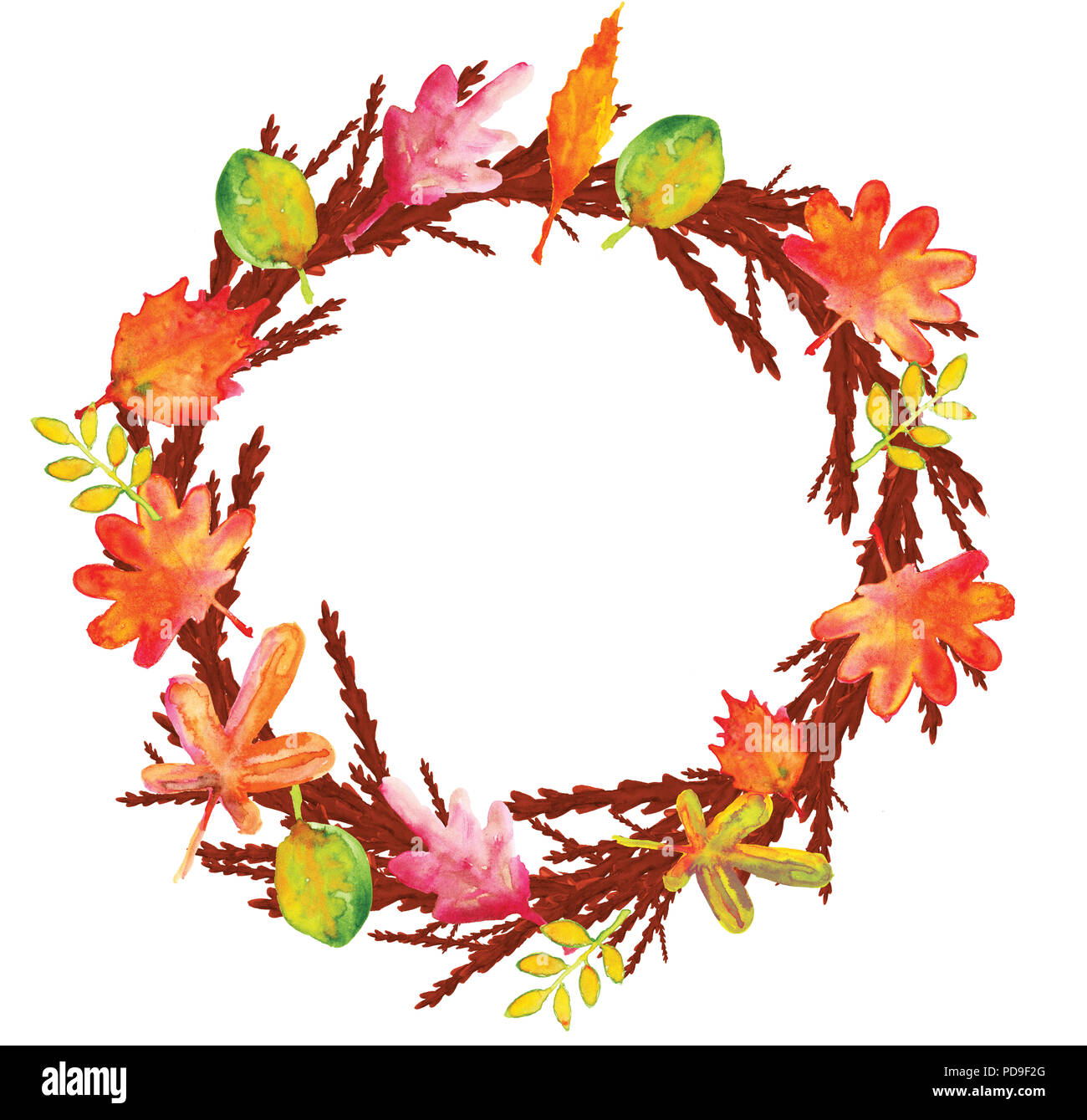 L\'illustration à l\'aquarelle de branches, rameaux et feuilles ...