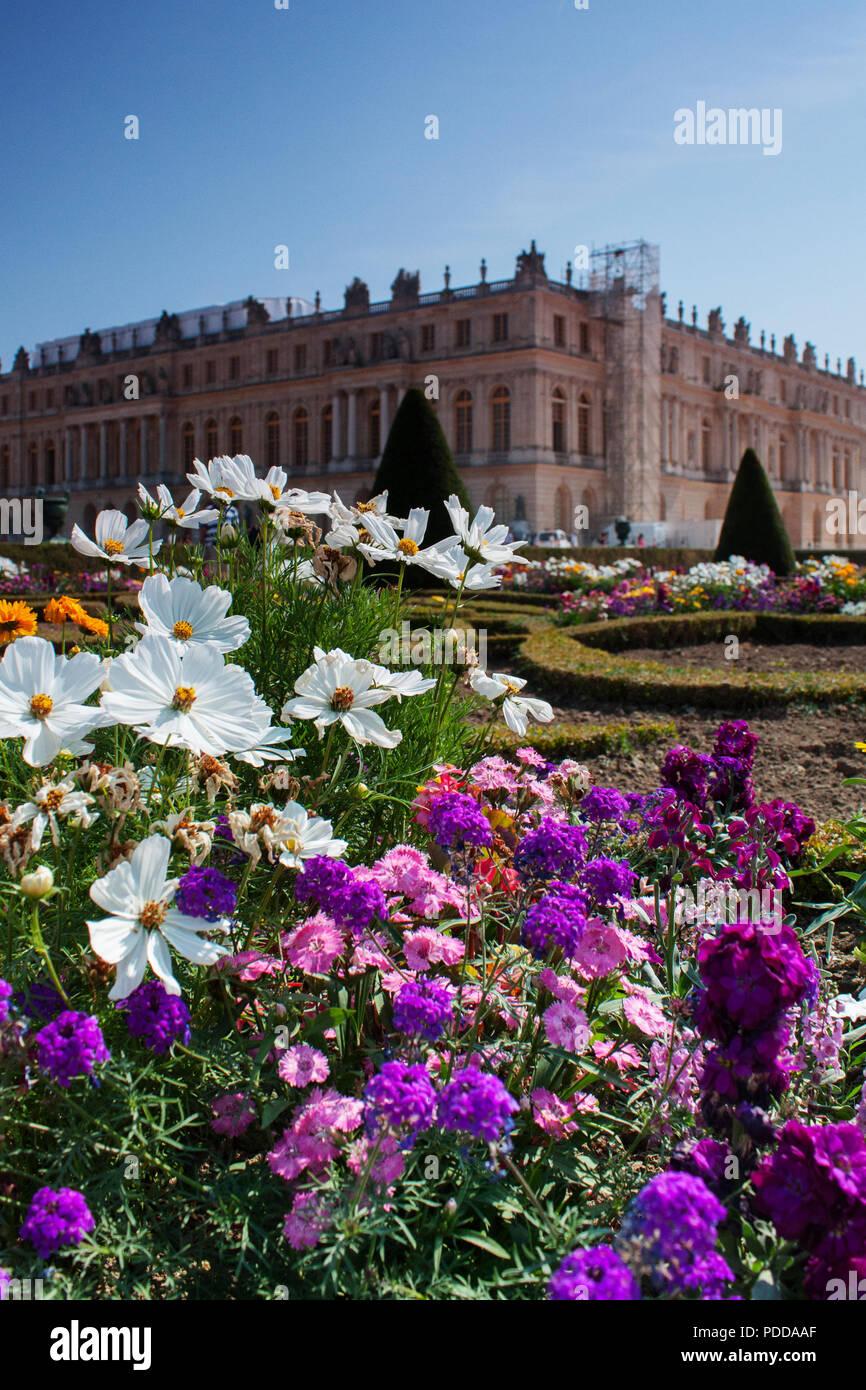 Des fleurs colorées dans le jardin de château de Versailles, l'été, gros plan vertical Photo Stock