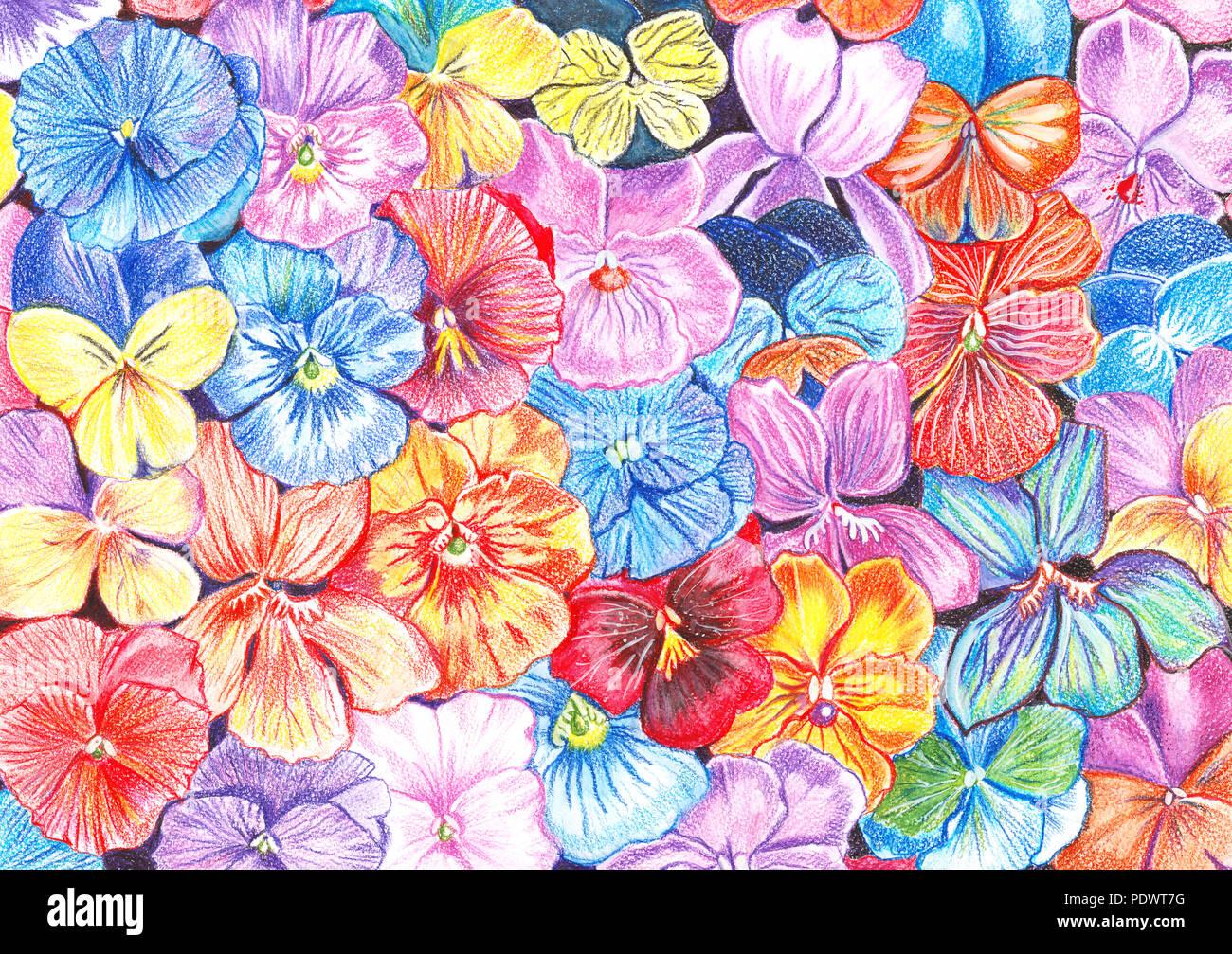 Dessin à La Main Avec Des Fleurs De Violettes Crayons De