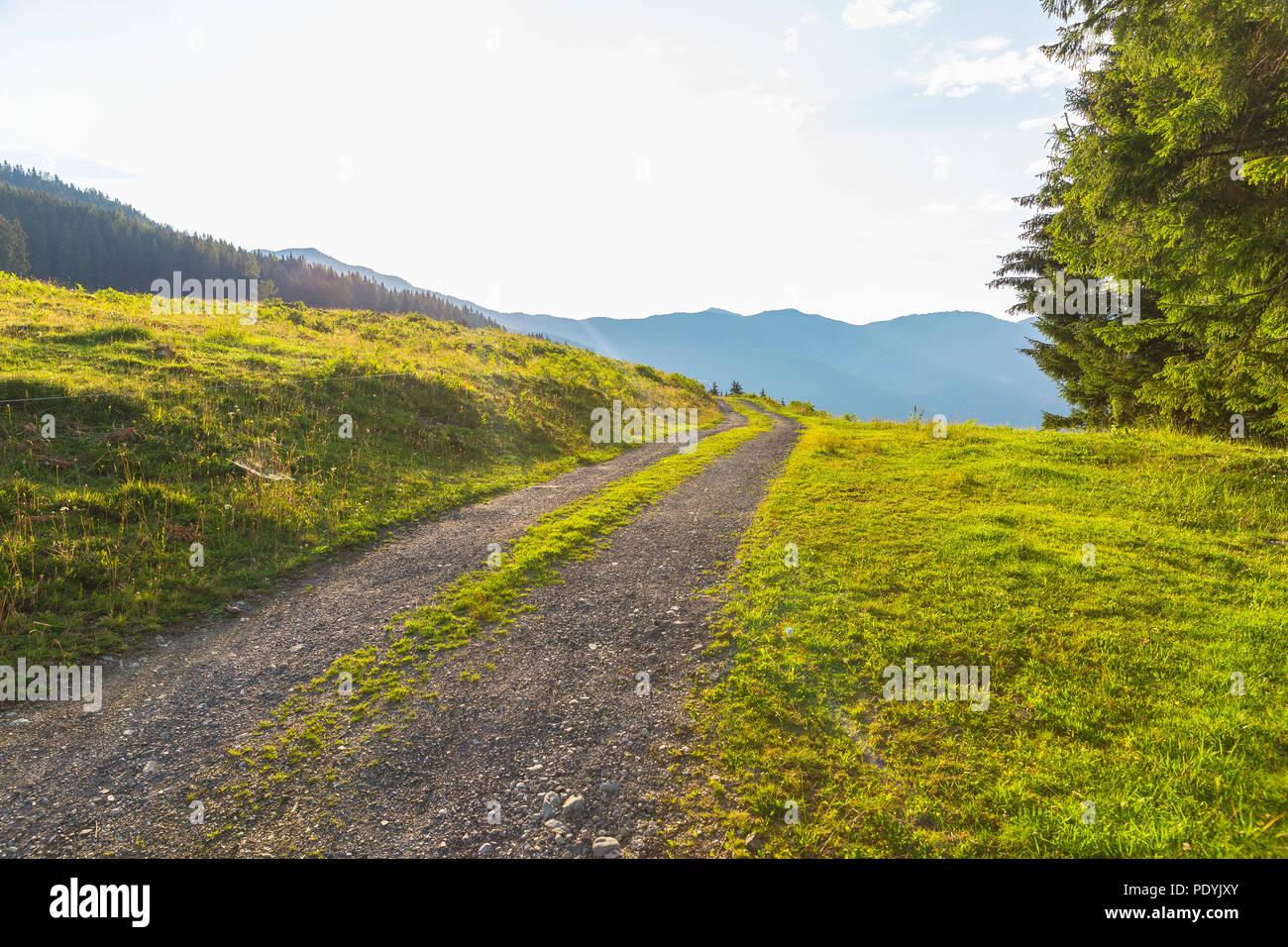 schotterweg im sommer, Österreich banque d'images, photo stock