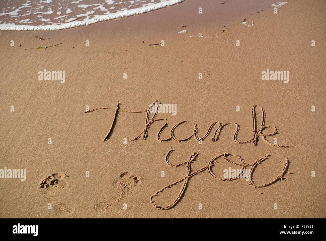 """Un beau message de remerciements """"merci"""" à la main dans un style cursif sur le sable rouge sur une plage avec une vague, l'Île du Prince Édouard. Photo Stock"""