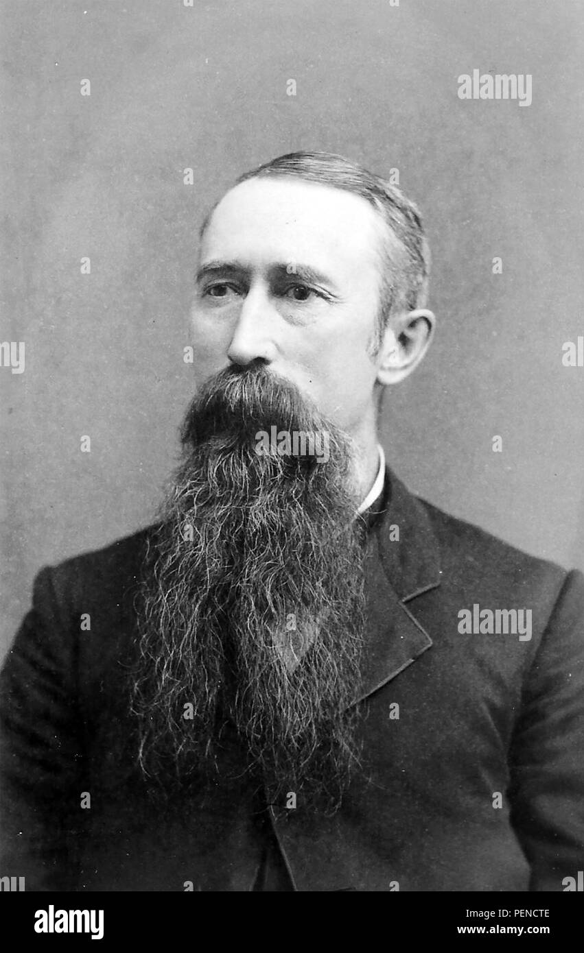 Homme BEARED fin du 19e siècle Photo Stock