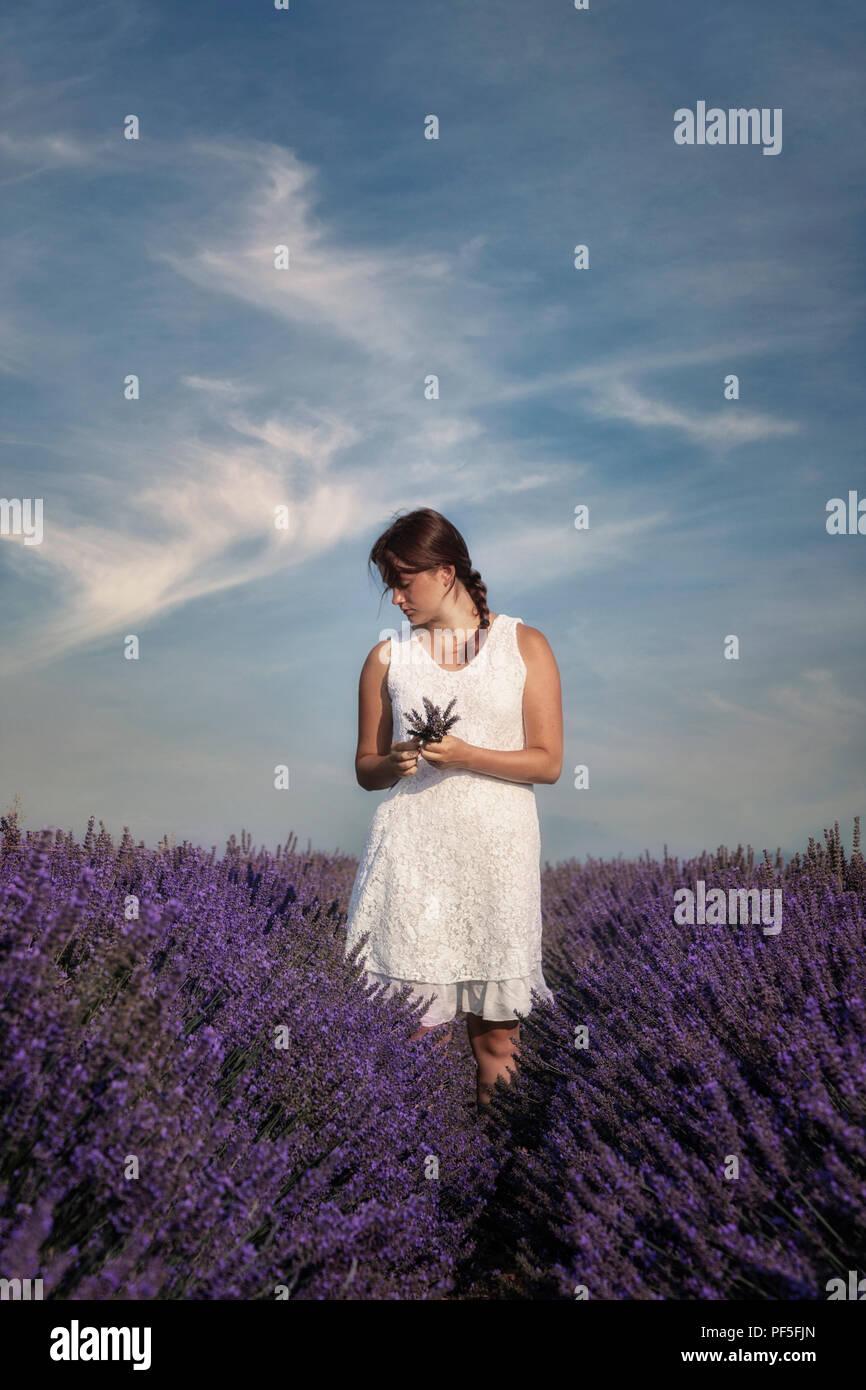 Une jeune fille en robe blanche debout dans un champ de lavande en Provence, France Banque D'Images