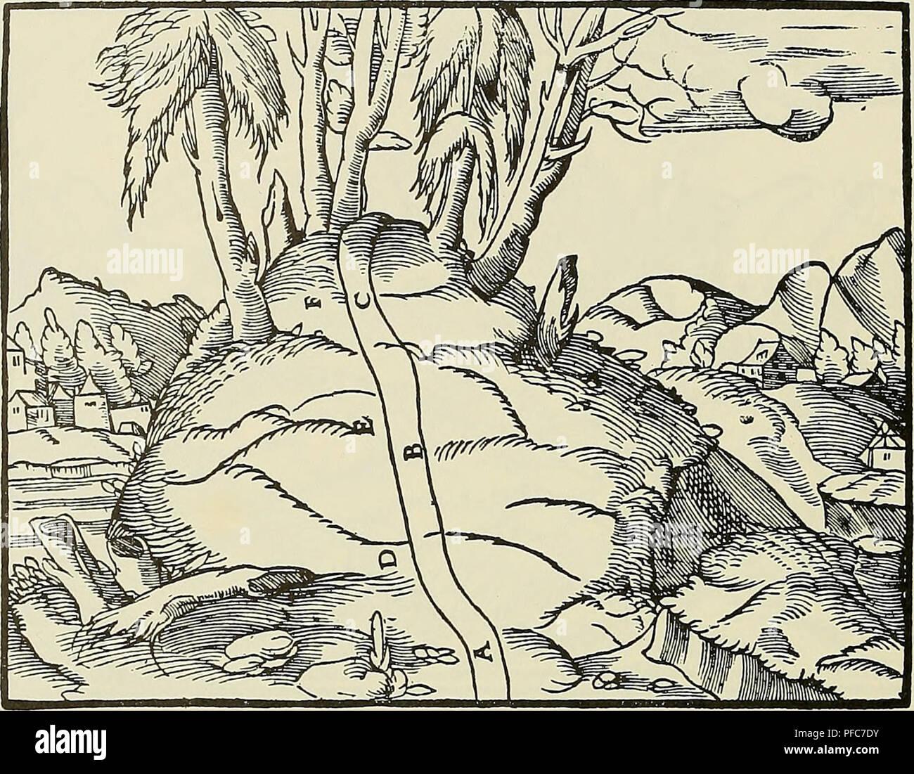 . De re metallica. Métallurgie; des minéraux. 56 LIVRE III. D'autres, au contraire, faire du nord au sud.. A, B, C-d'idées. D, E, F-couches dans les rochers. Les coutures dans les rochers nous indiquer si une veine s'étend de l'Est ou de l'ouest. Par exemple, si la pente coutures rock vers l'ouest lorsqu'ils descendent dans la terre, la veine est dit d'exécuter d'est en ouest; s'ils penchent vers l'Est, la veine est dit d'exécuter d'ouest en est, de la même manière, nous déterminer à partir de la couture si les veines de roche vont du nord ou sud. Mineurs maintenant diviser chaque trimestre de la terre en s Banque D'Images