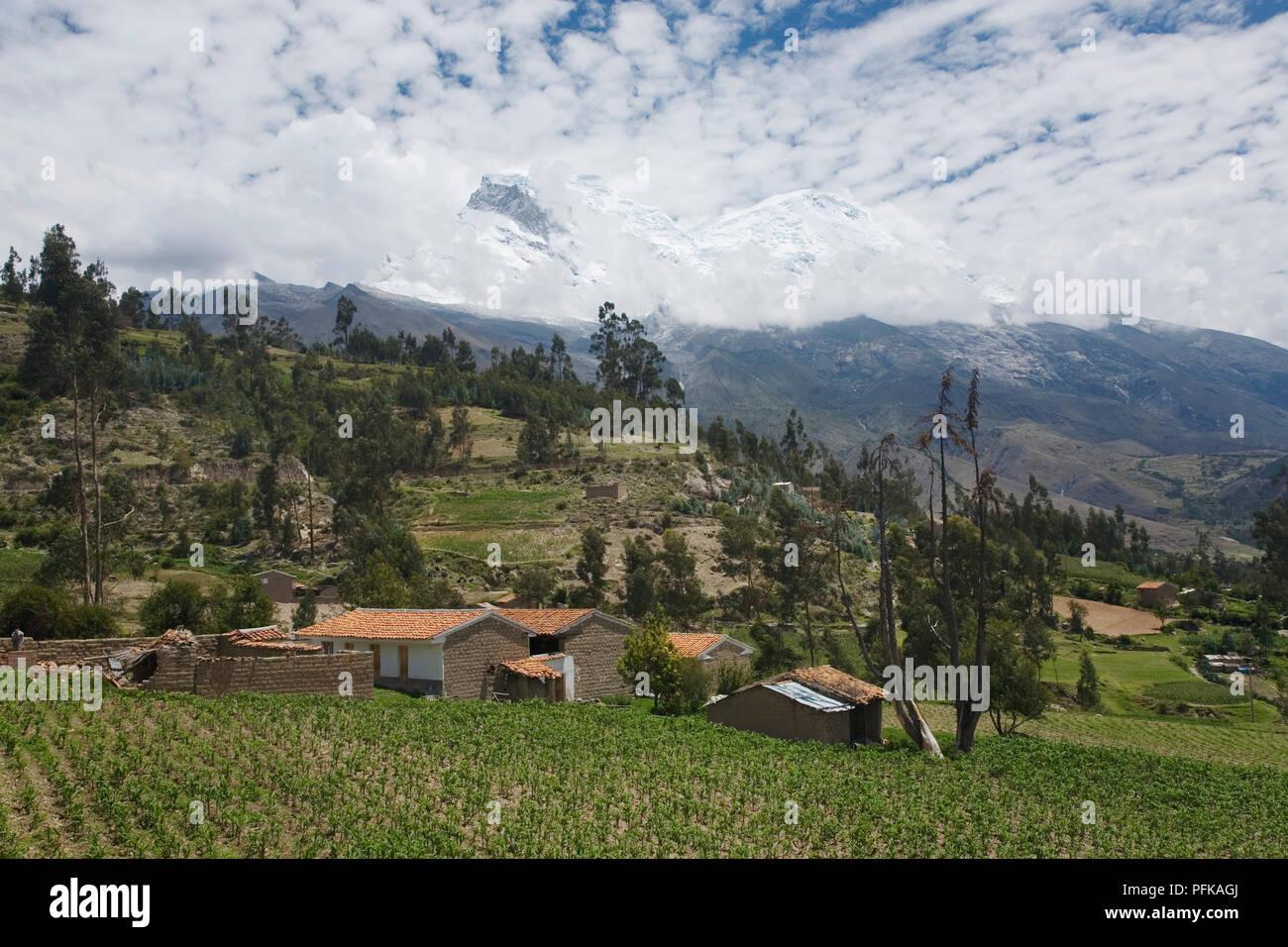 Le Pérou, Ancash, Cordillera Blanca, maisons de brique et de boue sur les champs, à flanc de montagnes couvertes de neige derrière les nuages Banque D'Images