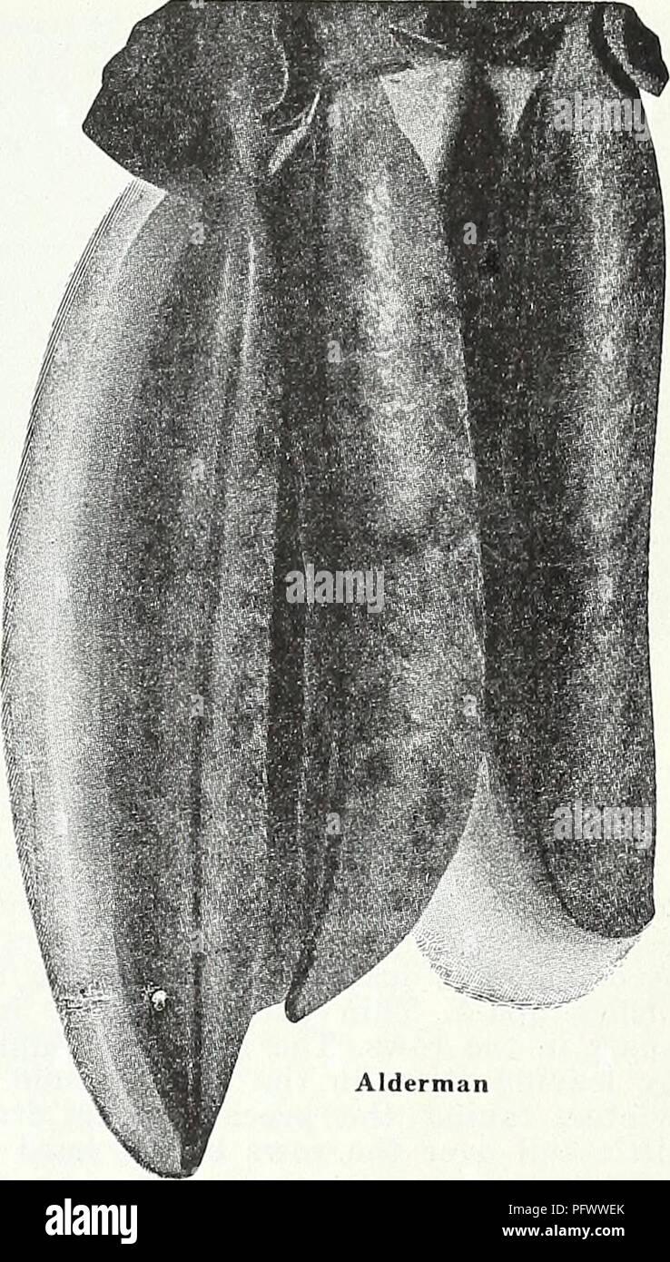 26x6mm Acrylique perles//plastique perles 20 pcs #k035 tube Noir