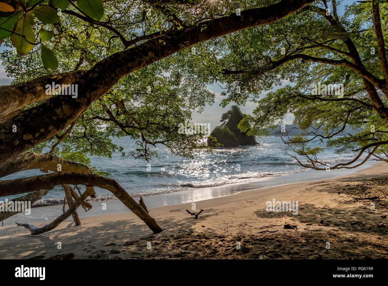 Plage, Parc national de Corcovado, péninsule d'Osa, au Costa Rica. Photo Stock