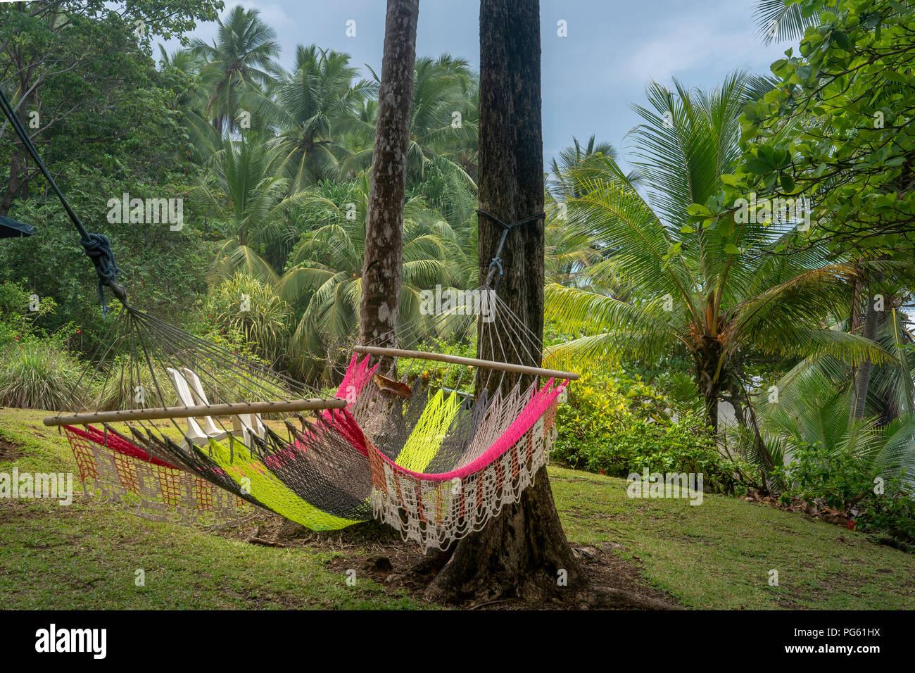 Hamac, parc national de Corcovado, péninsule d'Osa, au Costa Rica. Photo Stock