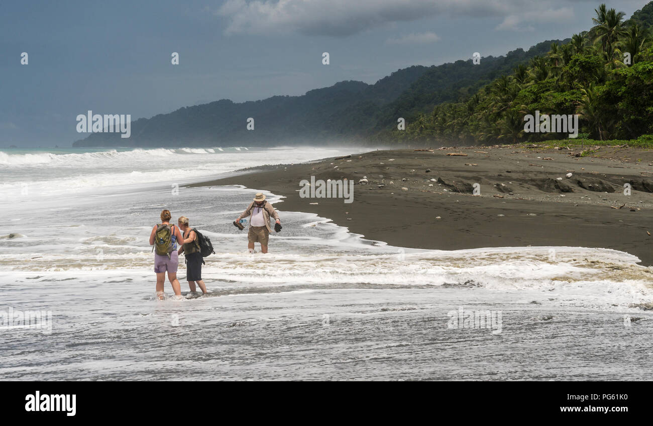Plage, Parc national de Corcovado, péninsule d'Osa, au Costa Rica. Photo Stock
