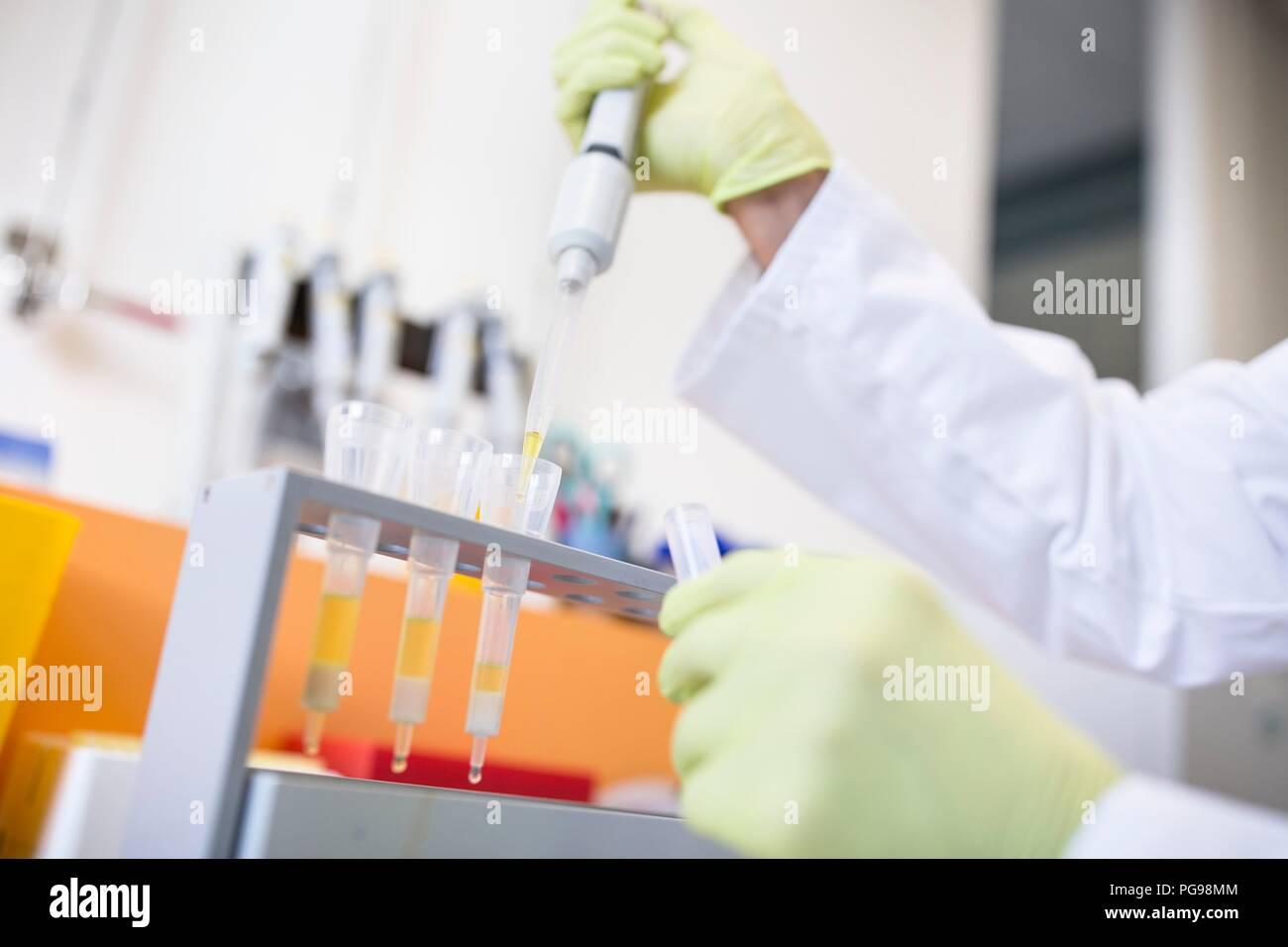 Les échantillons de pipetage technicien dans les cartouches pour l'extraction en phase solide (SPE). SPE est utilisé pour séparer les composés biologiques à partir d'un mélange d'approfondir l'analyse. Photo Stock