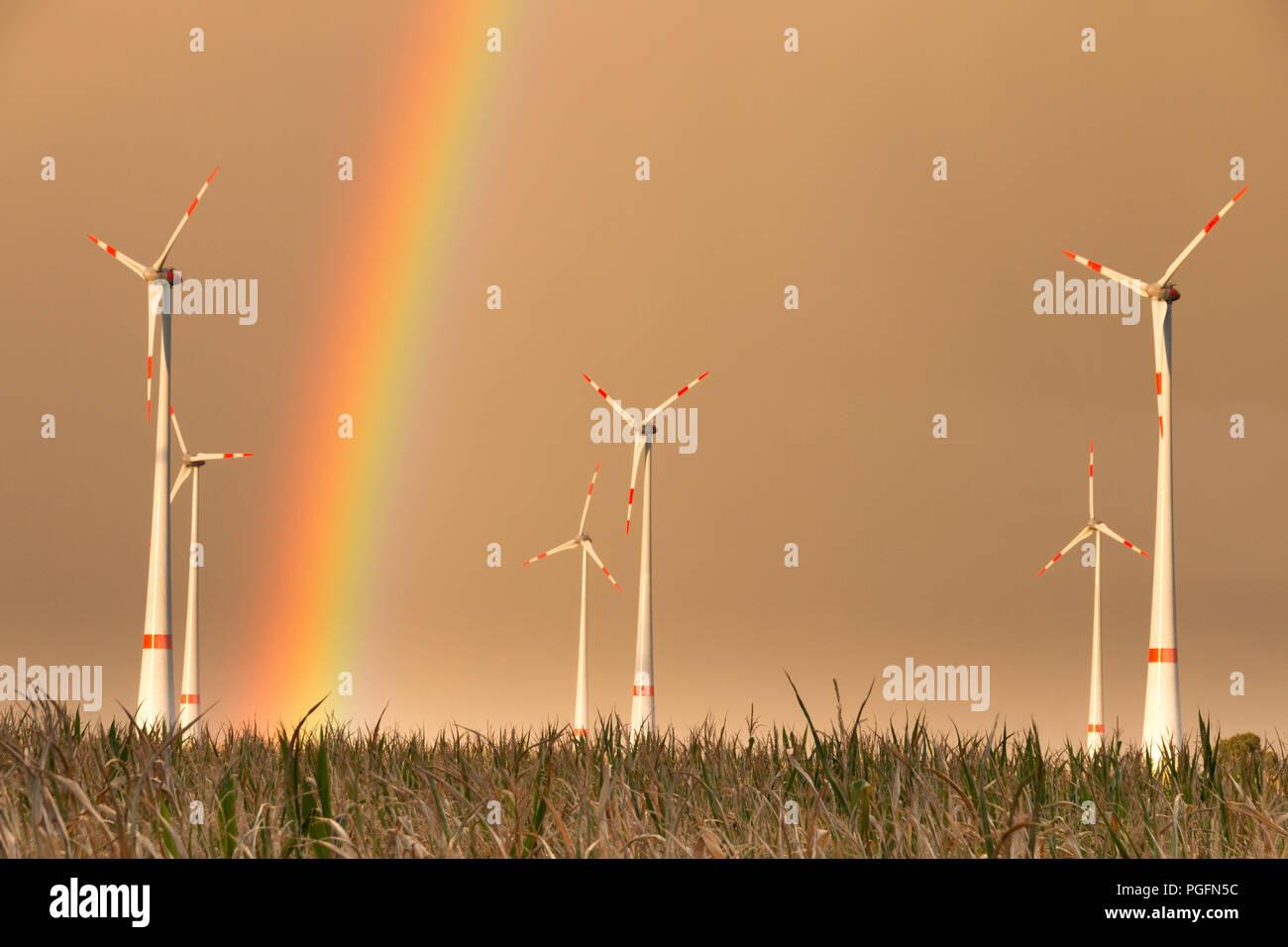 Allemagne - première tempête porte arc-en-ciel. TRÜSTEDT, ALLEMAGNE - le 25 août 2018: la première pluie de la saison produit un arc-en-ciel derrière éoliennes sur un terrain sec dans l'affaire Altmark près de Trüstedt, Allemagne. Credit: Mattis Kaminer/Alamy Live News Banque D'Images