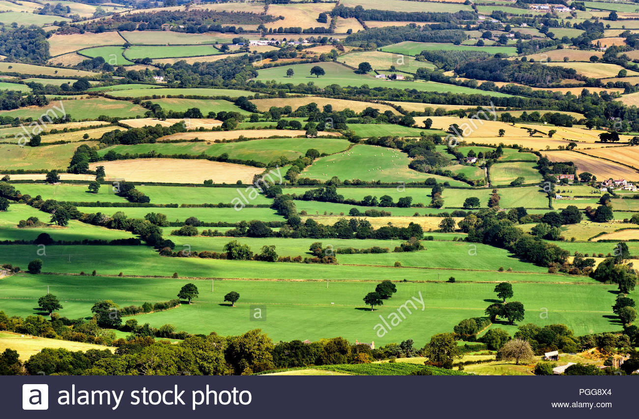 Champs Patchwork vu de Bromlow Callow, Shropshire, England, UK Photo Stock