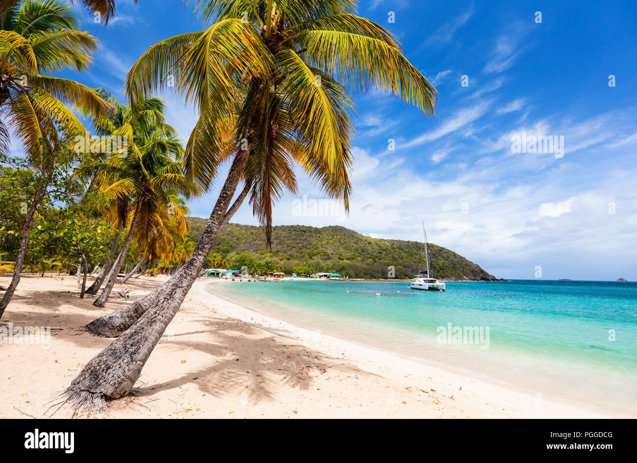 Tropical idyllique plage de sable blanc, les palmiers et la mer turquoise des Caraïbes de l'eau sur l'île de Mayreau à St Vincent et les Grenadines Banque D'Images