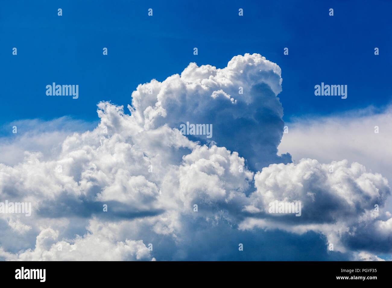Blanc moelleux cumulus dans un ciel bleu Photo Stock