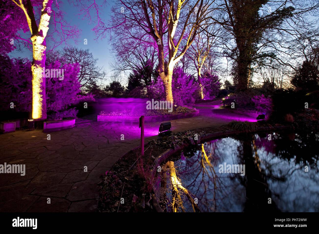 Feux d'hiver, parc de la Westphalie, Dortmund, Allemagne. Photo Stock