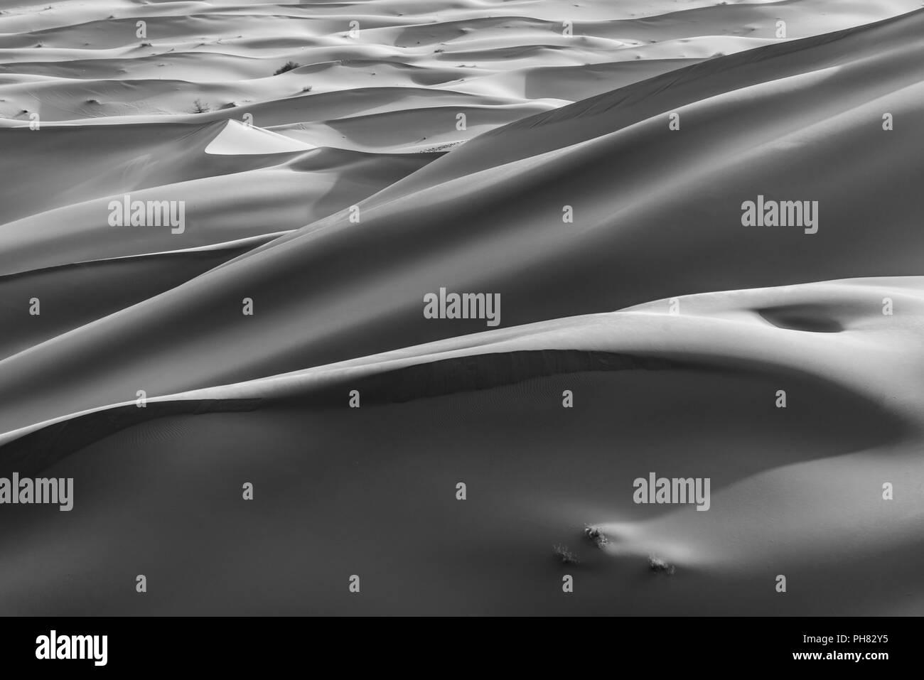 Dunes de sable dans le désert, monochrome, Erg Chebbi, Merzouga, Sahara, Maroc Banque D'Images