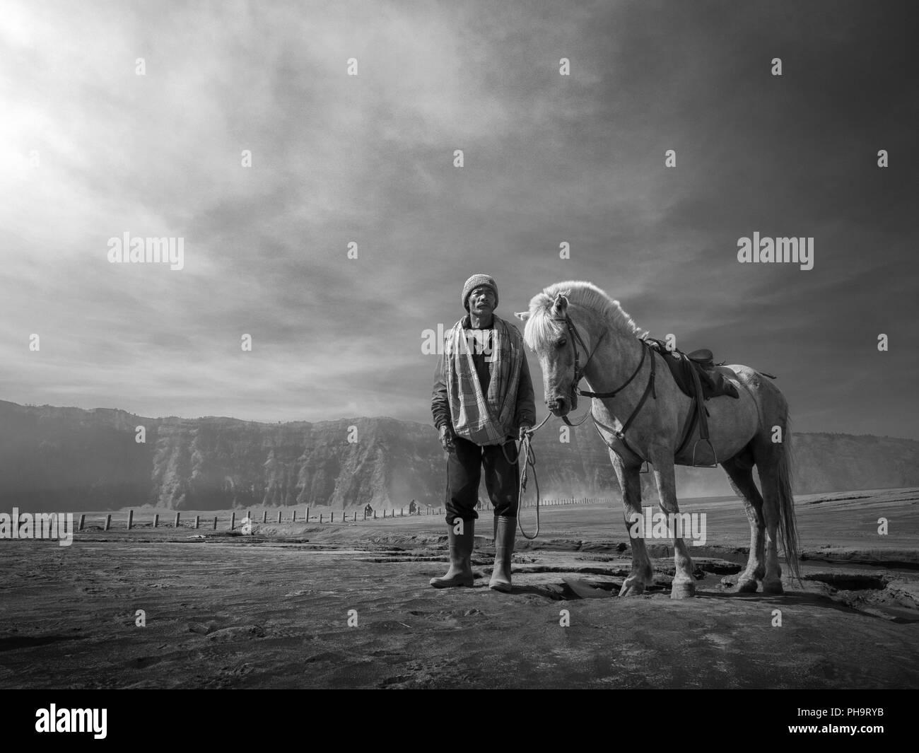 Un cheval-cavalier dans le Mont Bromo Photo Stock
