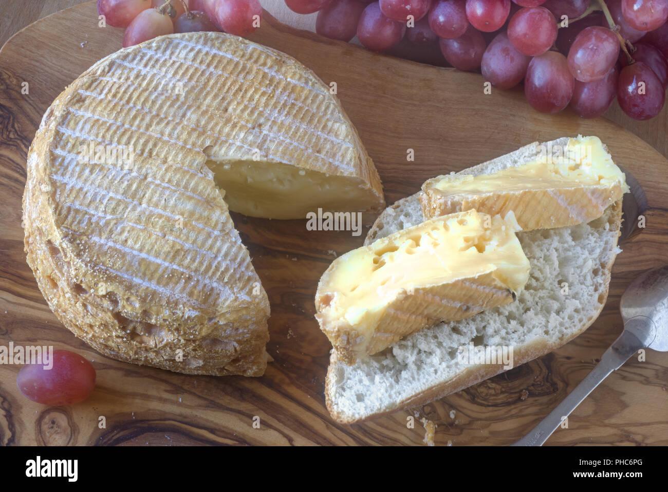 Livarot, fromage français; fromage français de Normandie Photo Stock