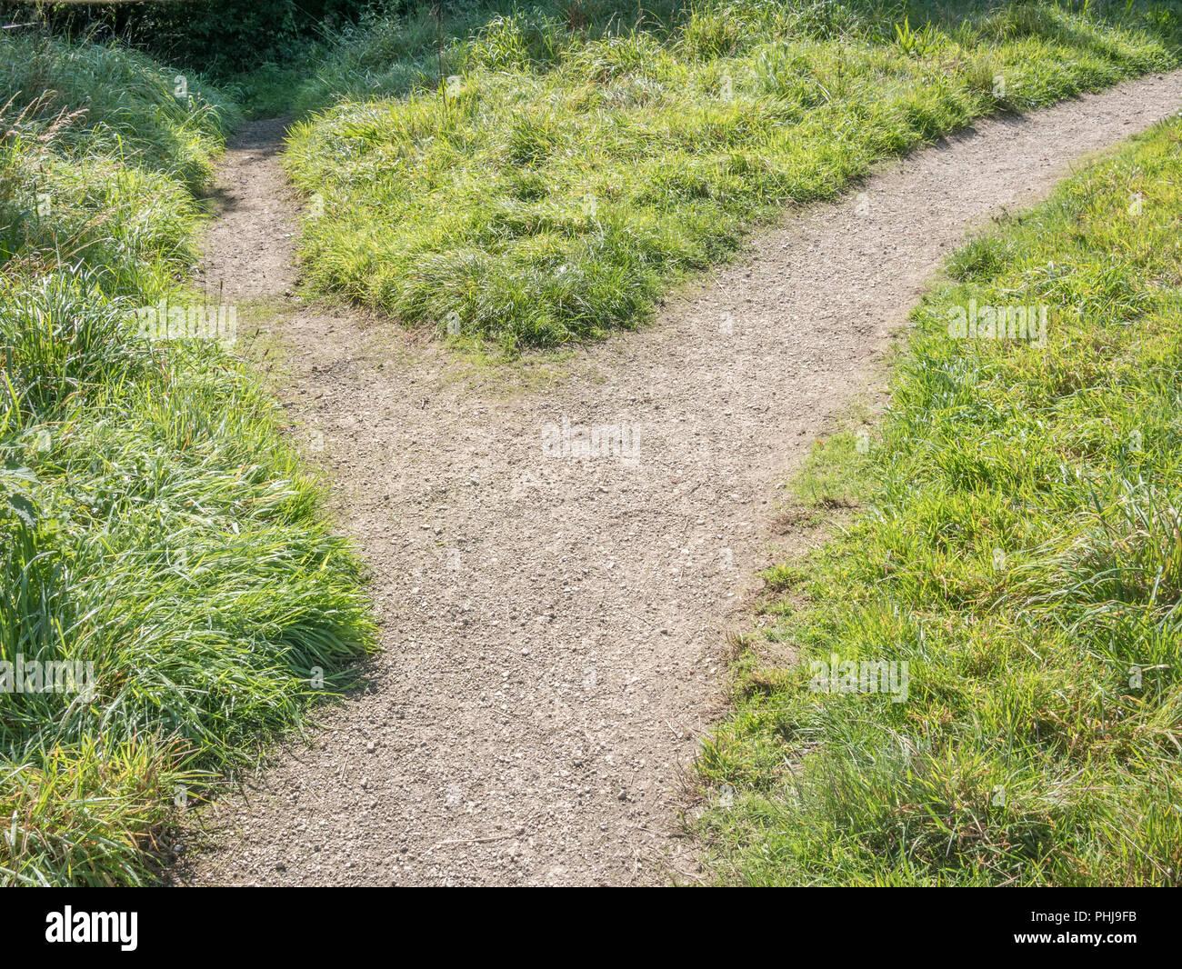 Petit sentier de ramification - métaphore pour le changement de direction, les différentes passerelles, d'itinéraire, des changements de carrière, d'une répartition, va séparer. Photo Stock