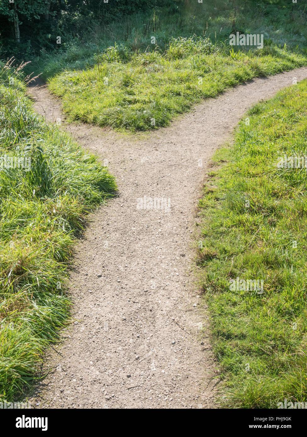 Petit sentier de ramification - métaphore du changement de direction, les différentes passerelles, d'itinéraire, changements de carrière, d'une répartition, va séparer. Photo Stock