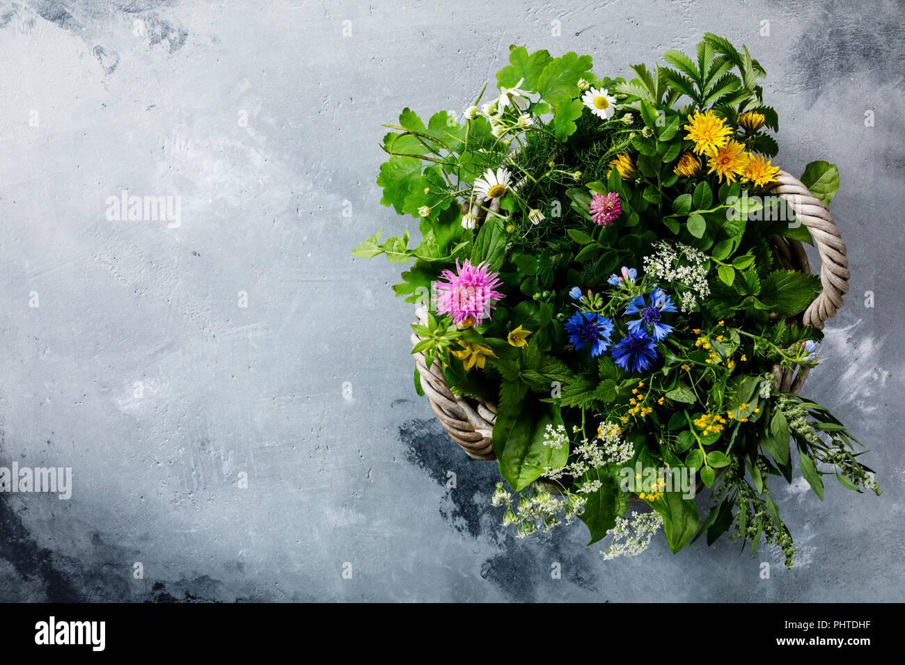Prairie et d'herbes médicinales pour la qualité de l'alimentation régime paléo biohackers Photo Stock