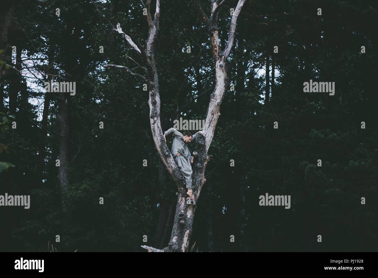 L'homme se déplaçant dans des forêts nature Photo Stock