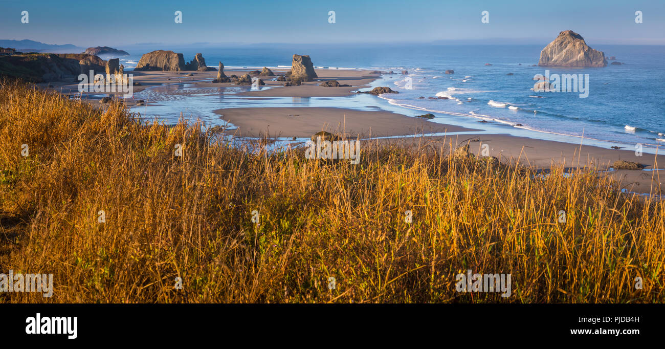 Arches, seastacks, et des pierres à Band.on Beach, Oregon. Photo Stock
