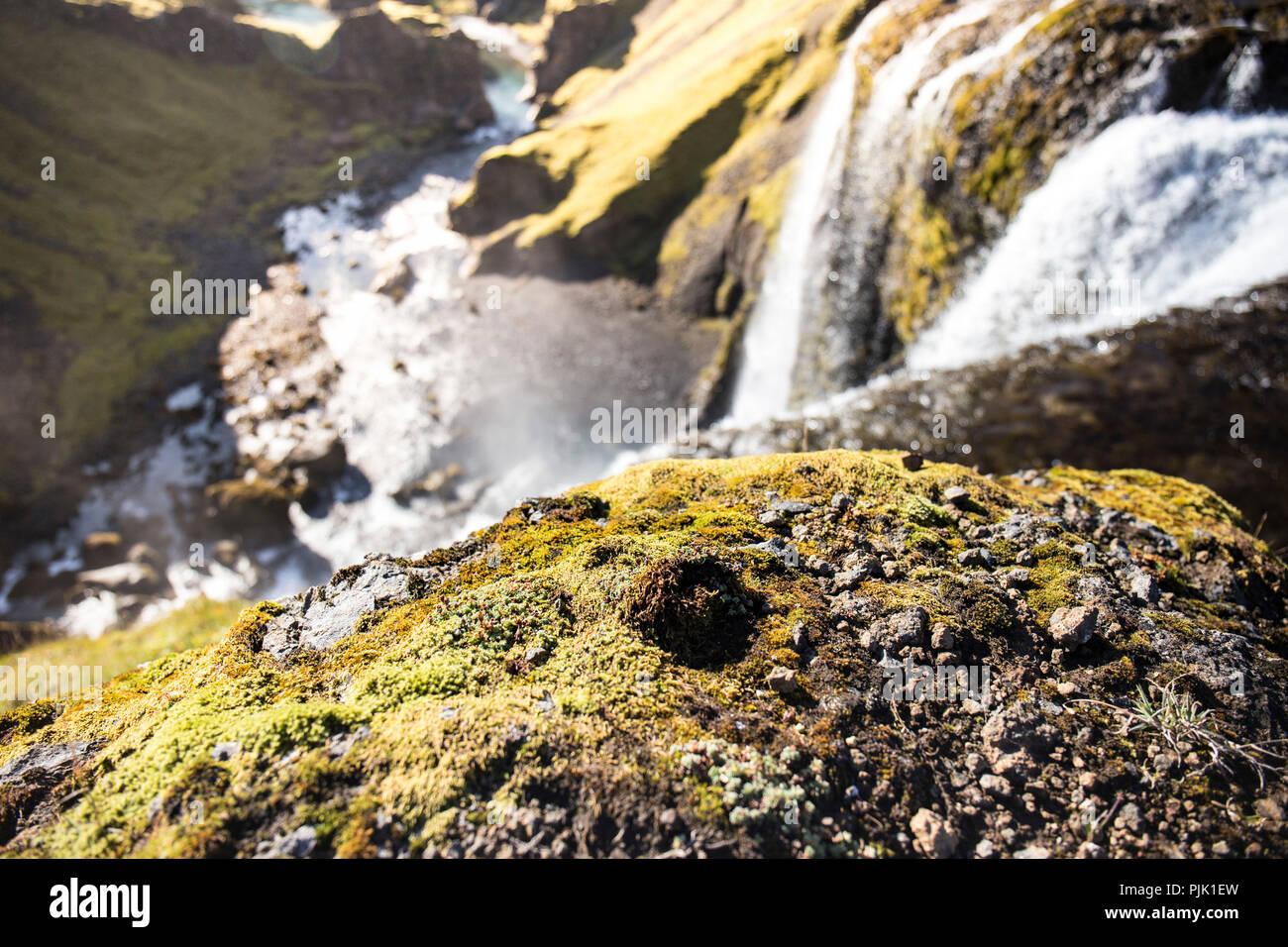 Une puissante cascade dans le paysage luxuriant en Islande Banque D'Images