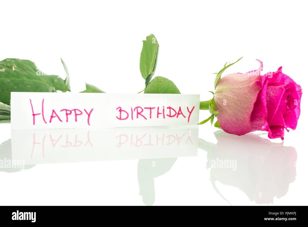 Joyeux Anniversaire Message Leaning On Belle Rose Rose Sur Fond Blanc Photo Stock Alamy