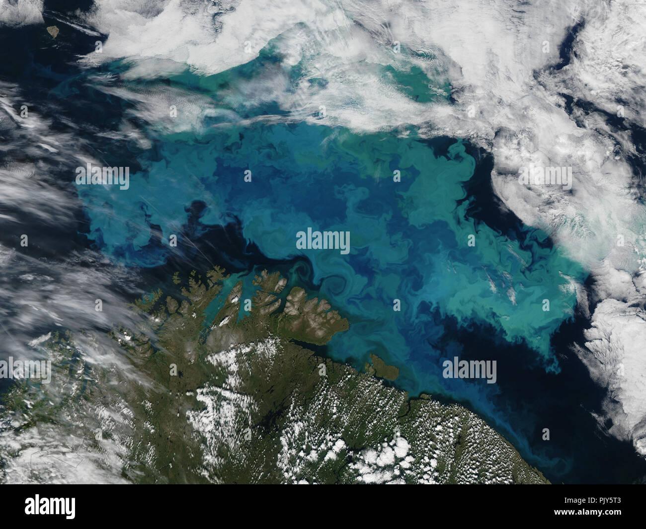 La haute altitude vue d'une floraison de plancton dans la mer de Barents Banque D'Images