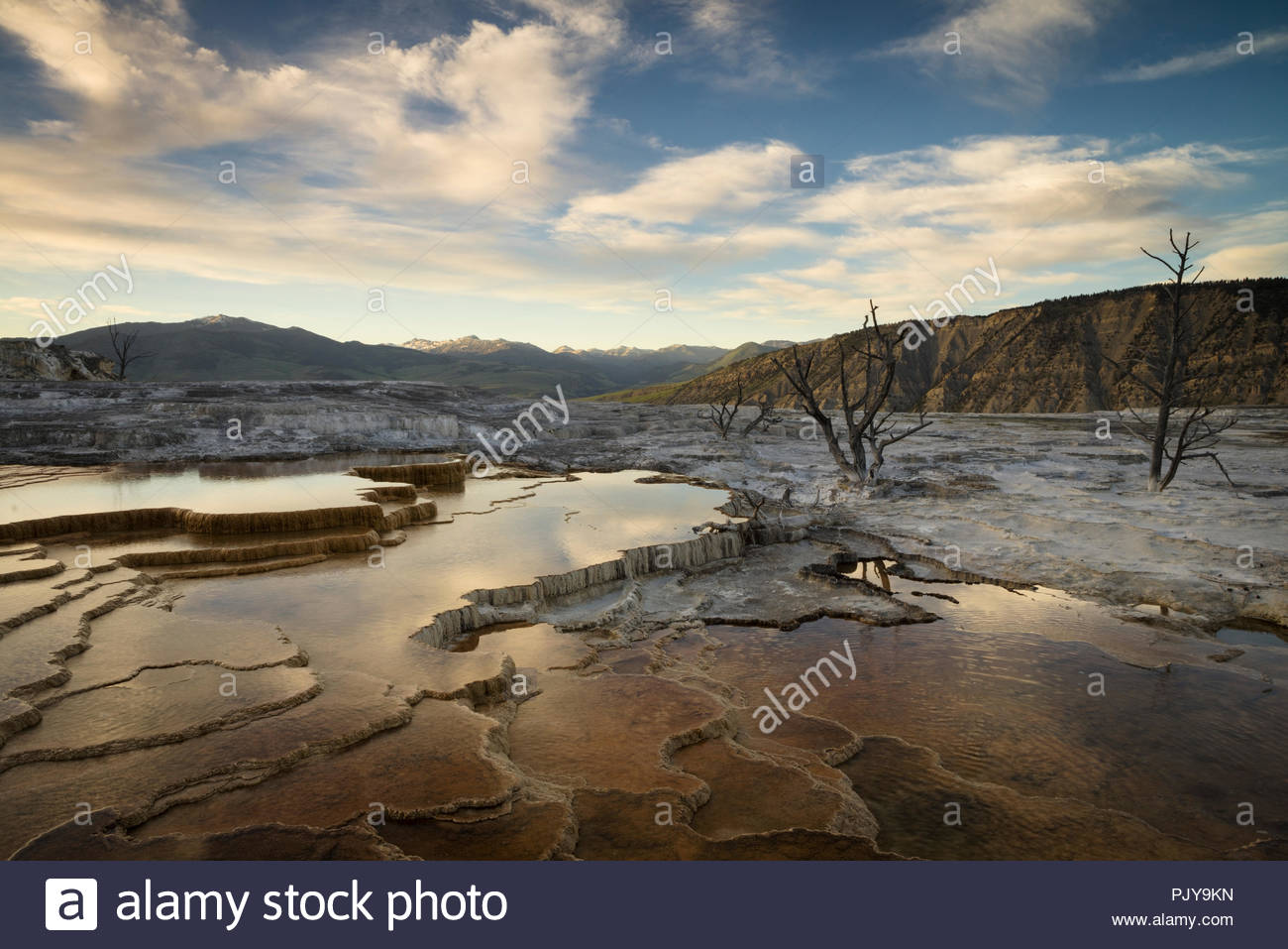 Mammoth Hot Springs au coucher du soleil, le Parc National de Yellowstone, Wyoming Photo Stock