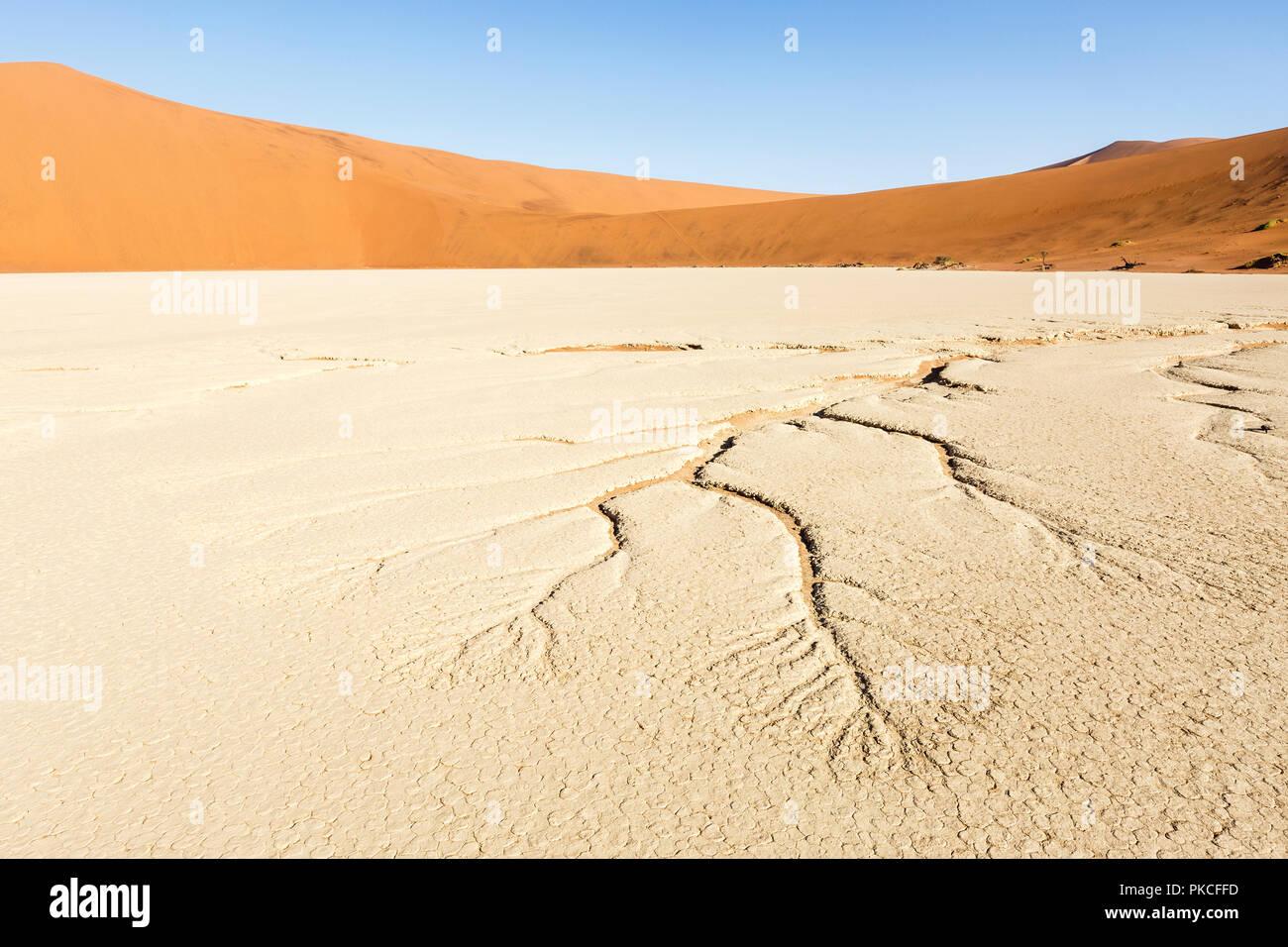 Veines d'eau dans le sol sec, Deadvlei Sossusvlei, Namibie, Photo Stock