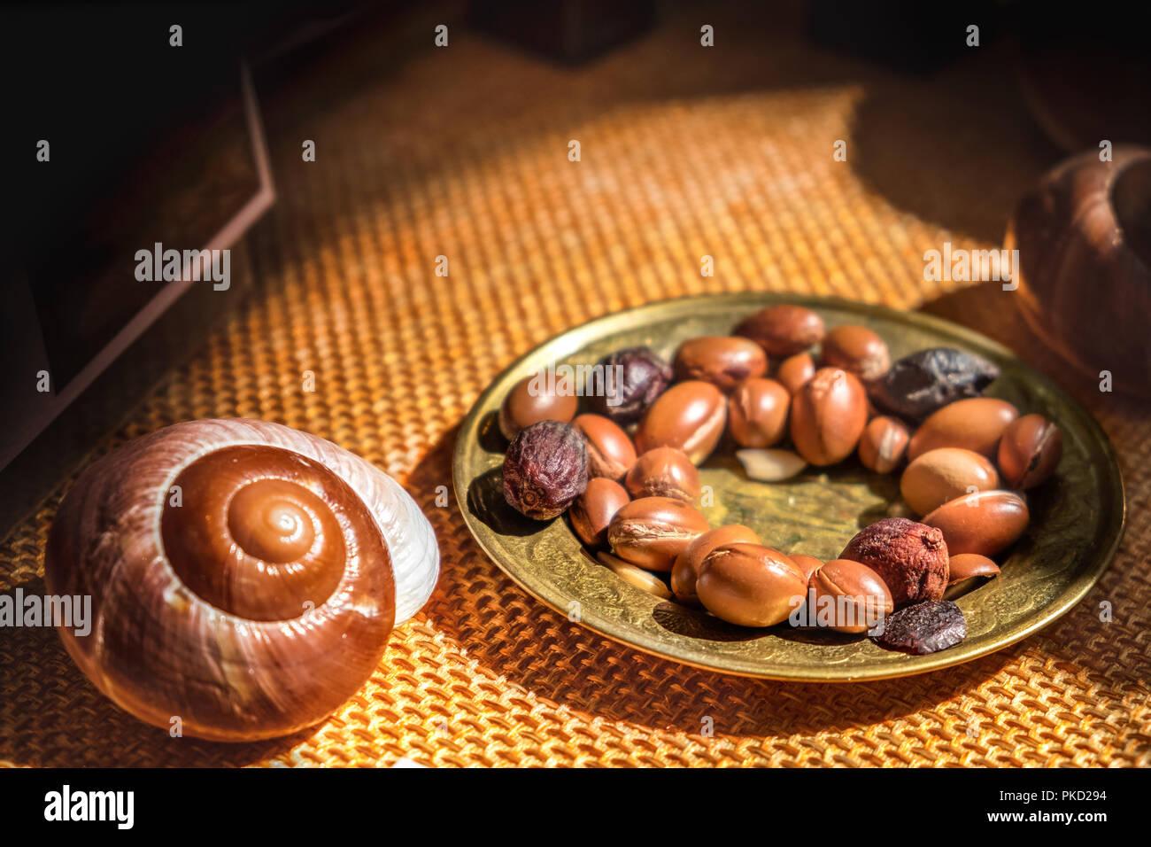 L'huile d'Argan est faite par les écrous d'Argan - fruit antioxydant utile pour la guérison de la rougeur de la peau inflammations vergetures Photo Stock