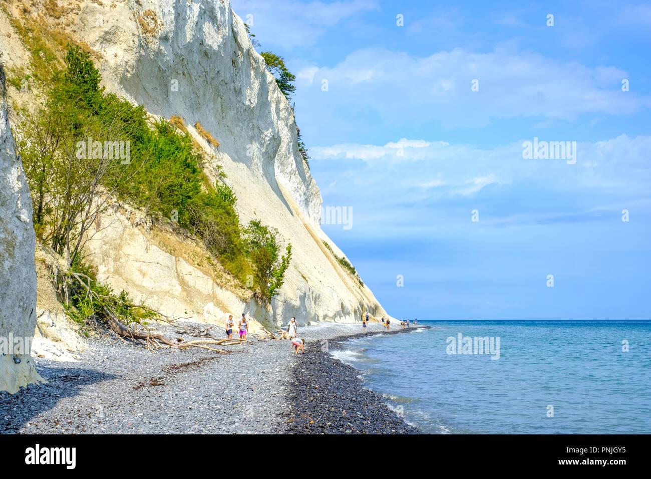 Moens Klint, les falaises blanches de l'île de Moen, Moen, le Danemark, la Scandinavie, l'Europe. Banque D'Images