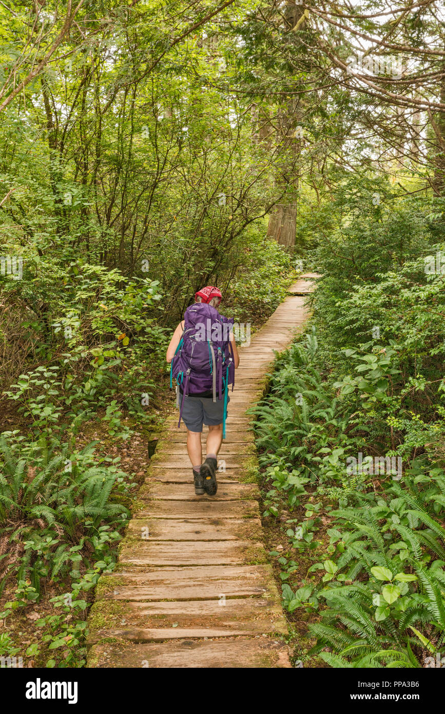Femme d'âge moyen, de randonnée Sentier du cap Alava, forêt pluviale tempérée, près du cap Alava, côte du Pacifique, l'Olympic National Park, Washington State, USA Photo Stock