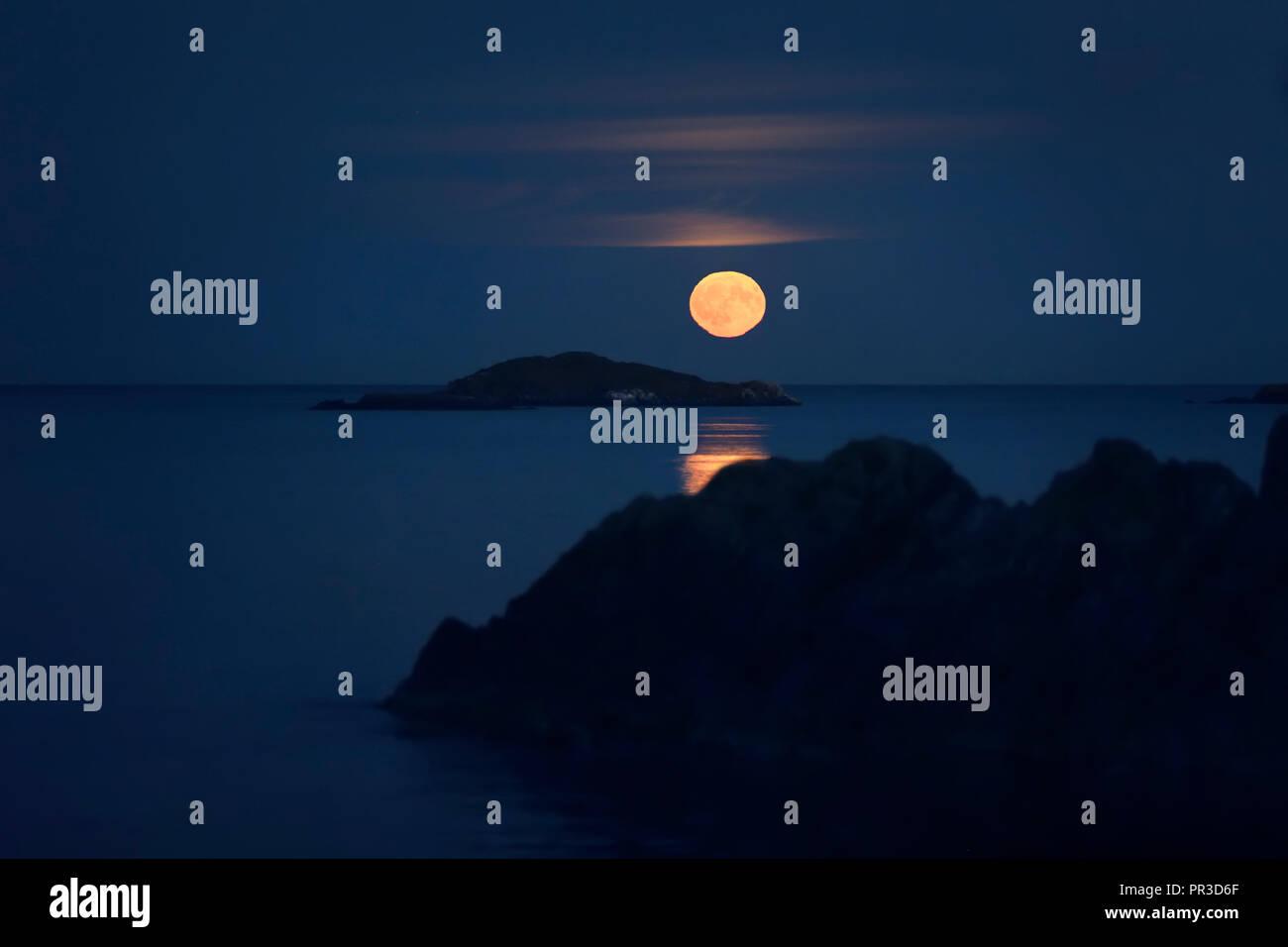 Les îles s'élevant au-dessus de big red Harvest Moon complète au-dessus de l'océan Pacifique, septembre 2018, l'île de Vancouver, BC, Canada Photo Stock
