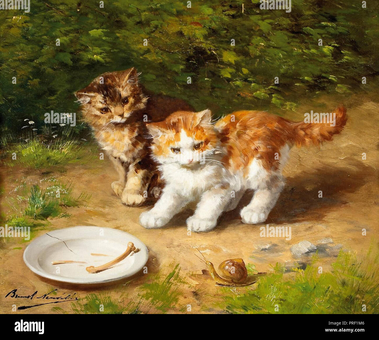 """Résultat de recherche d'images pour """"escargot et chaton"""""""