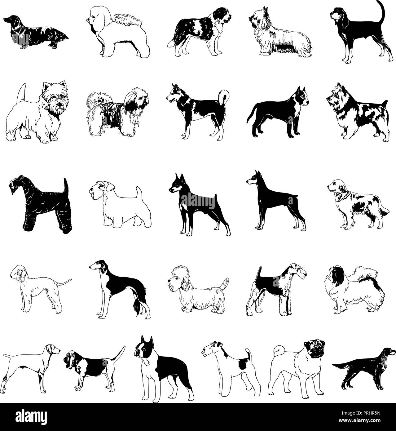 Clipart Chien Dessin Anime Vector Illustration Collection Image Vectorielle Stock Alamy