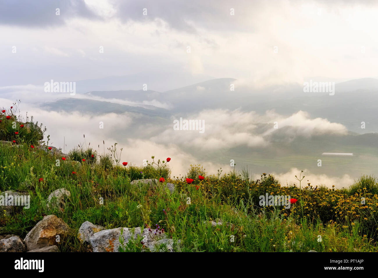 L'Albanie, Fier County, vue de Byllis, paysage et le brouillard du matin Photo Stock
