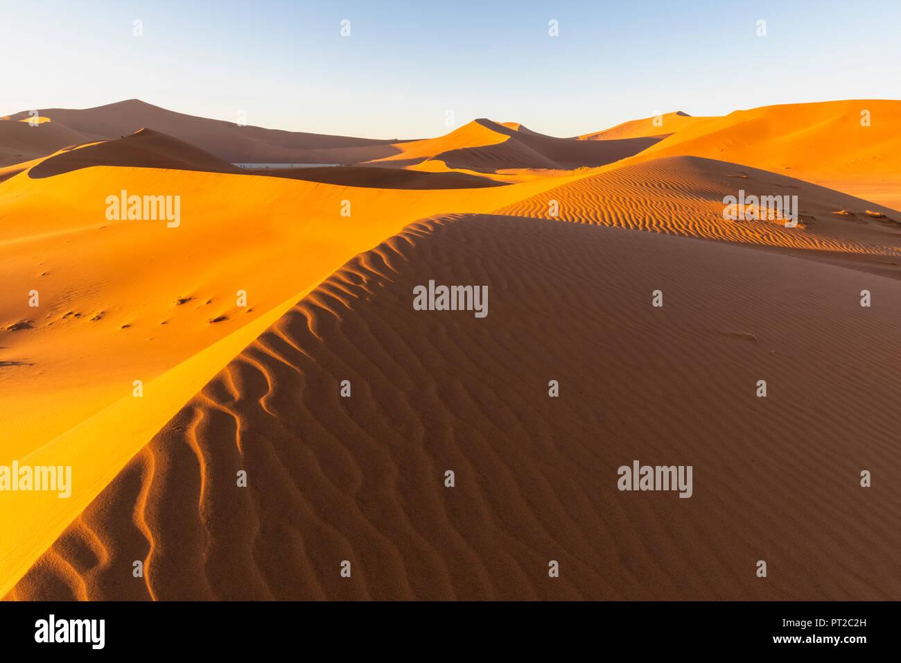 L'Afrique, la Namibie, désert du Namib Naukluft, Parc National, Dead Vlei et dune de sable 'Big Daddy' Banque D'Images