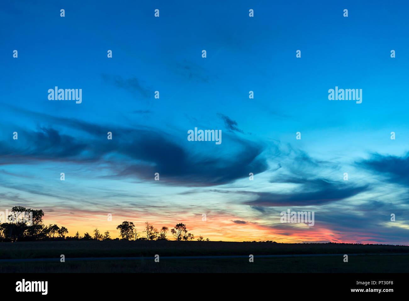 Silouettes arbre avec de sombres nuages au coucher du soleil, Bavière, Allemagne Photo Stock