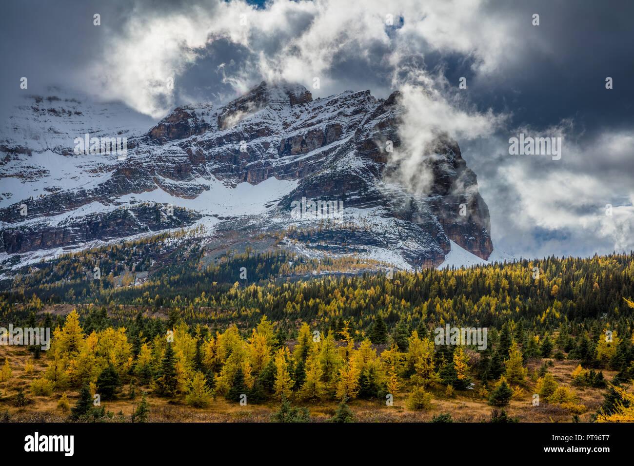 Le parc provincial du mont Assiniboine est un parc provincial de la Colombie-Britannique, Canada, situé autour du mont Assiniboine. Photo Stock