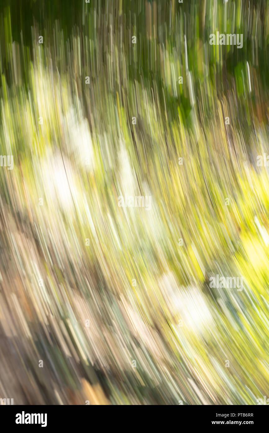 Longue multicolore étrange traces légères causées par rotation de caméra pour créer des effets visuels indescriptible Photo Stock