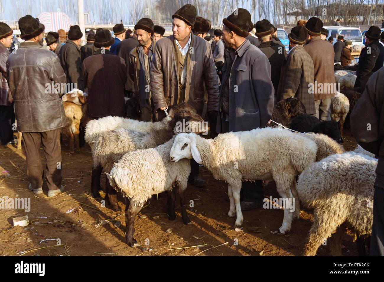 Kashgar, Xinjiang, Chine: Uyghur hommes Achat et vente d'ovins au mal, le grand bazar du marché du bétail Dimanche de Kashgar. Photo Stock