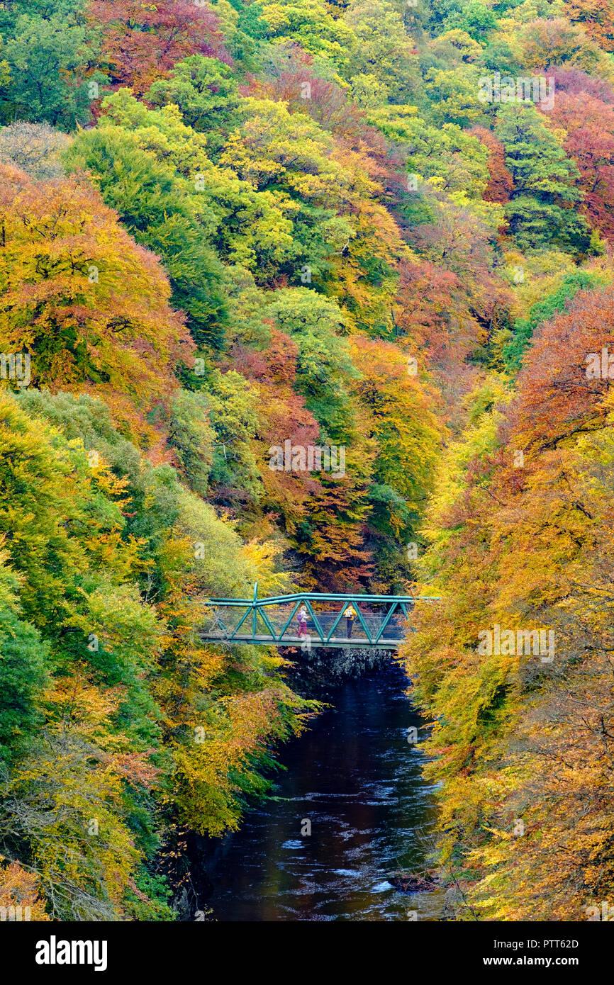 Perth, Ecosse, Royaume-Uni, 10 octobre 2018. Couleurs d'automne spectaculaire dans les arbres entourent une petite passerelle traversant la rivière Garry à Killiecrankie, le célèbre le Perthshire beauty spot. Credit: Iain Masterton/Alamy Live News Banque D'Images