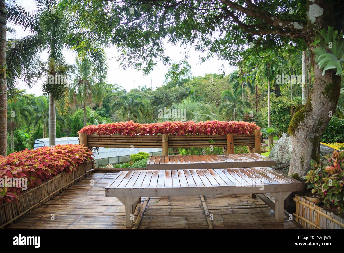 Maison rural tropical jardin en bois bambou accueil sur balcon ...