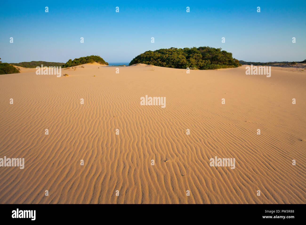 DUNES DE SABLE CÔTIÈRES, Dovela, Inharrime, au Mozambique. Photo Stock