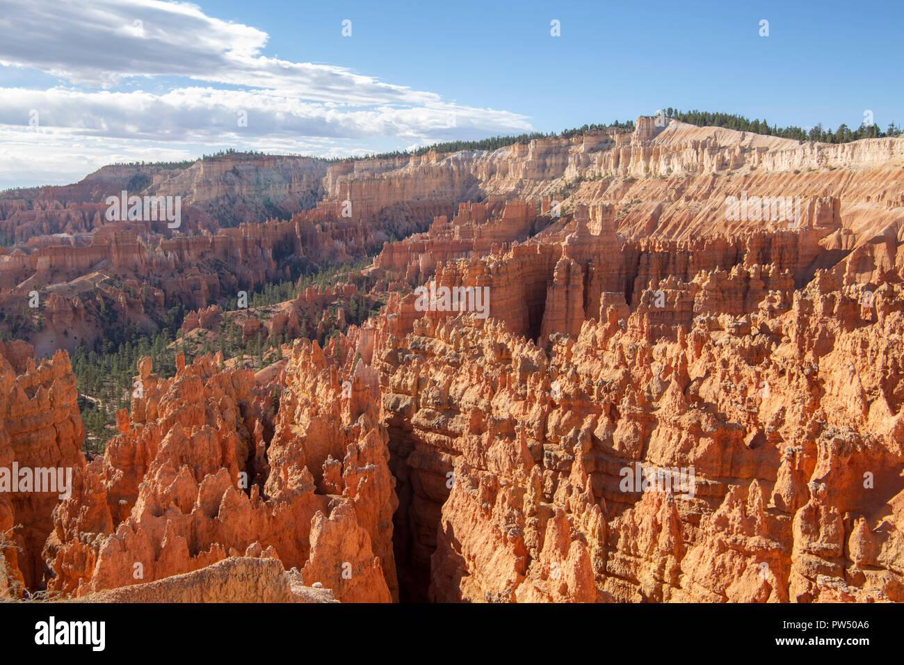 Bryce Canyon dans l'Utah Photo Stock